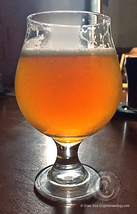 Green Street IPA - Four Mile Brewing. Photo by Drew Vics Cryptobrewology.com.